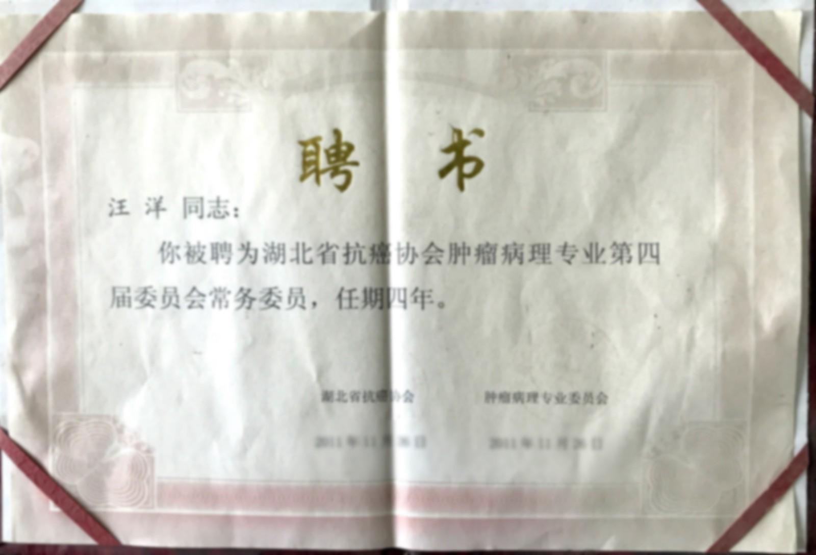 泰维总经理汪洋被湖北省抗癌协会聘为常务理事.jpg